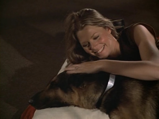 File:The.Bionic.Woman.S03E01.DVDrip.XviD-SAiNTS.avi 001295120.jpg