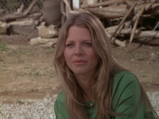 File:The.Bionic.Woman.S03E16.DVDrip.XviD-SAiNTS.avi 002653120.jpg