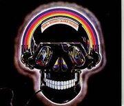 Nelson skull session