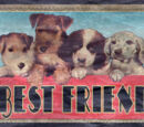 Best Friend Pet Food