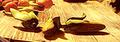 Thumbnail for version as of 06:32, November 3, 2013
