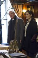 The Blacklist - Episode 1.14 - Madeline Pratt - Promotional Photos (1) 595 slogo