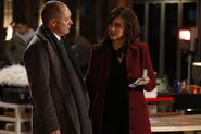 The Blacklist - Episode 1.12 - The Alchemist - Promotional Photos (13) 595 slogo