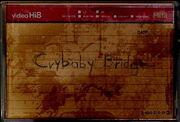 Crybabybridge
