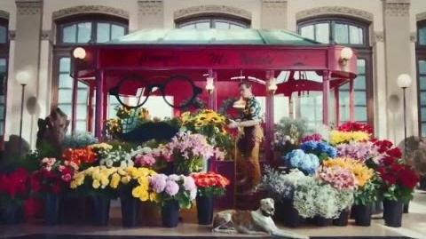 Blossom Blast Saga Flower Stand 30 US TV Commercial