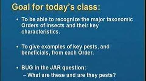 Introduction to Entomology Part I