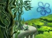 180px-Kelp Forest.jpg