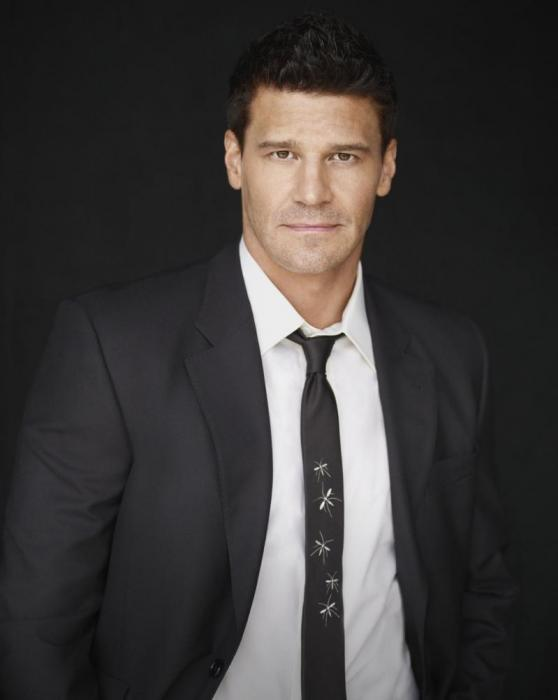 http://vignette2.wikia.nocookie.net/bones/images/6/69/Seeley-booth-promo-pic_558x700.jpg/revision/latest?cb=20120611033359