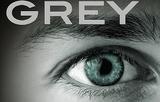 Greyhub2
