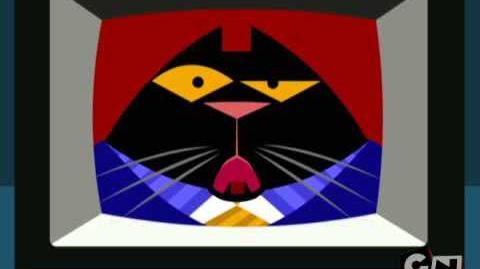 Calling Cat 22! - Flying Discs