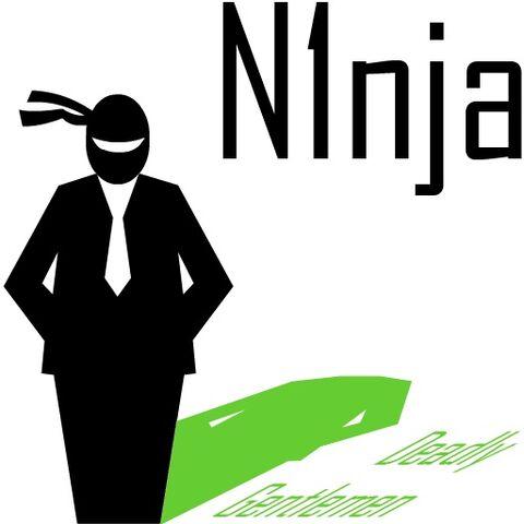 File:N1nja.jpg