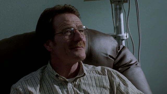 File:1x06 - Walt in a therapy.jpg