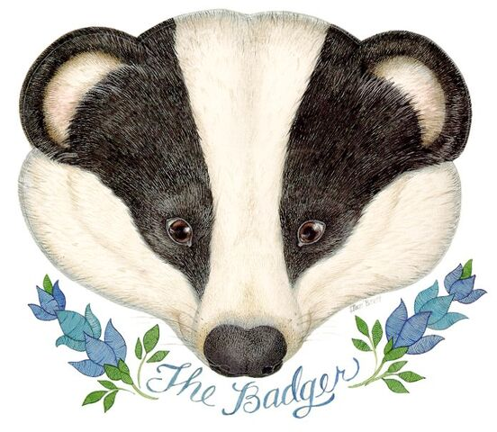 File:The badger.jpg