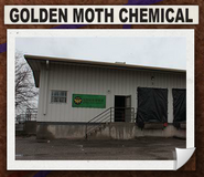 Goldenmoth