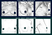 Projected vs shallow breasts, same size
