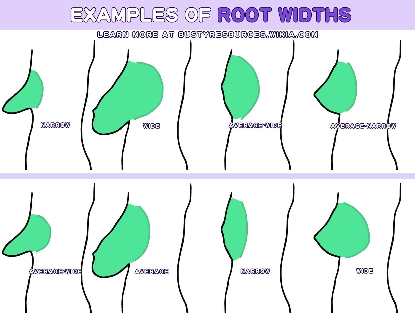 la forme des seins
