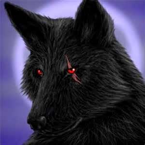 File:Personal USMCdevildog19937 Black wolf.jpg