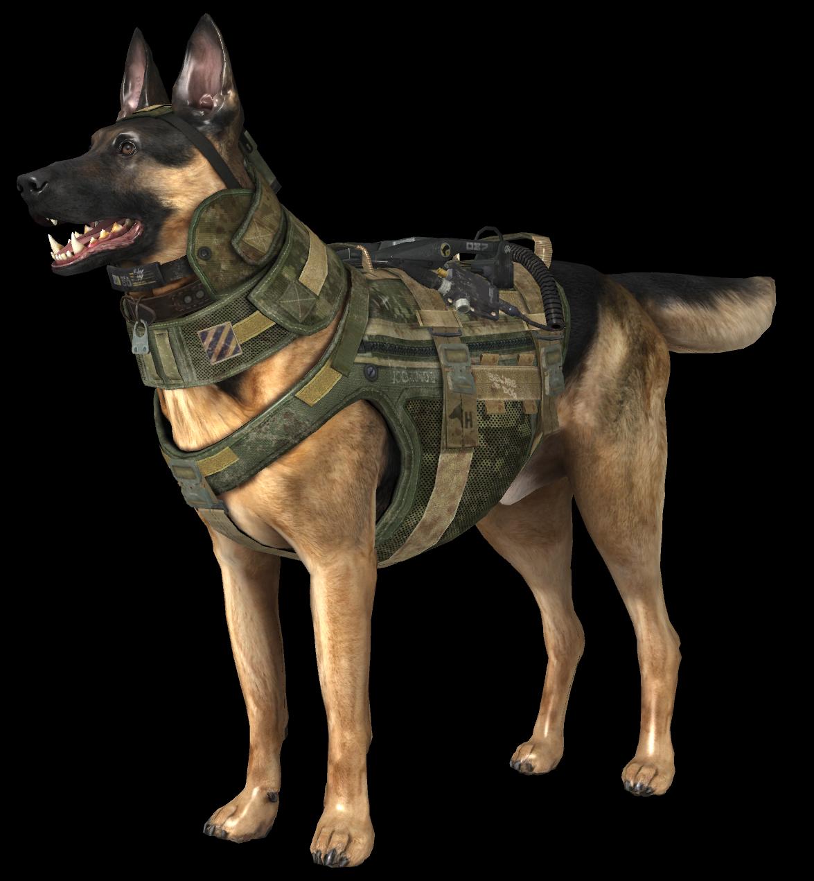 Image Riley Model CoDGpng Call Of Duty Wiki FANDOM