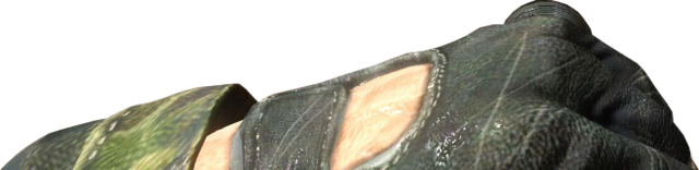 File:Flashlight Close-Up BO.png