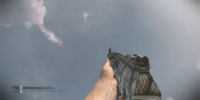 AK-12/Camouflage