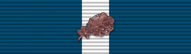 File:Medal, Twelve Month Good Conduct with Oak Leaf.png