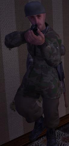 File:Fallschirmjäger soldier CoD1.png