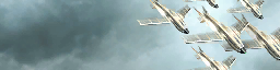 File:Swarm Kills Calling Card BOII.png