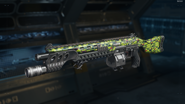 File:205 Brecci Gunsmith Model Integer Camouflage BO3.png