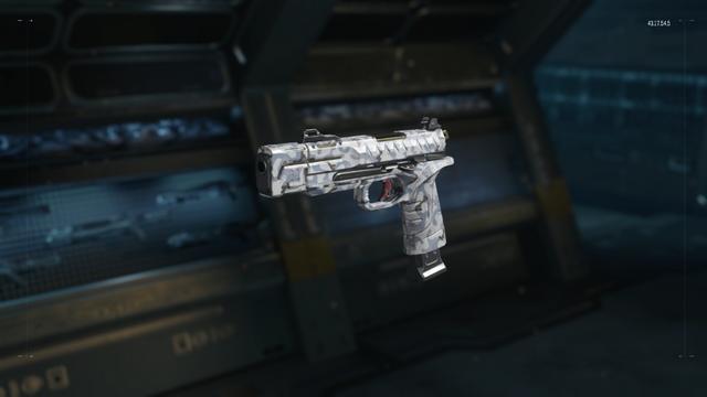 File:RK5 Gunsmith model Arctic Camouflage BO3.png