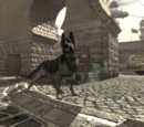 Dog (animal)