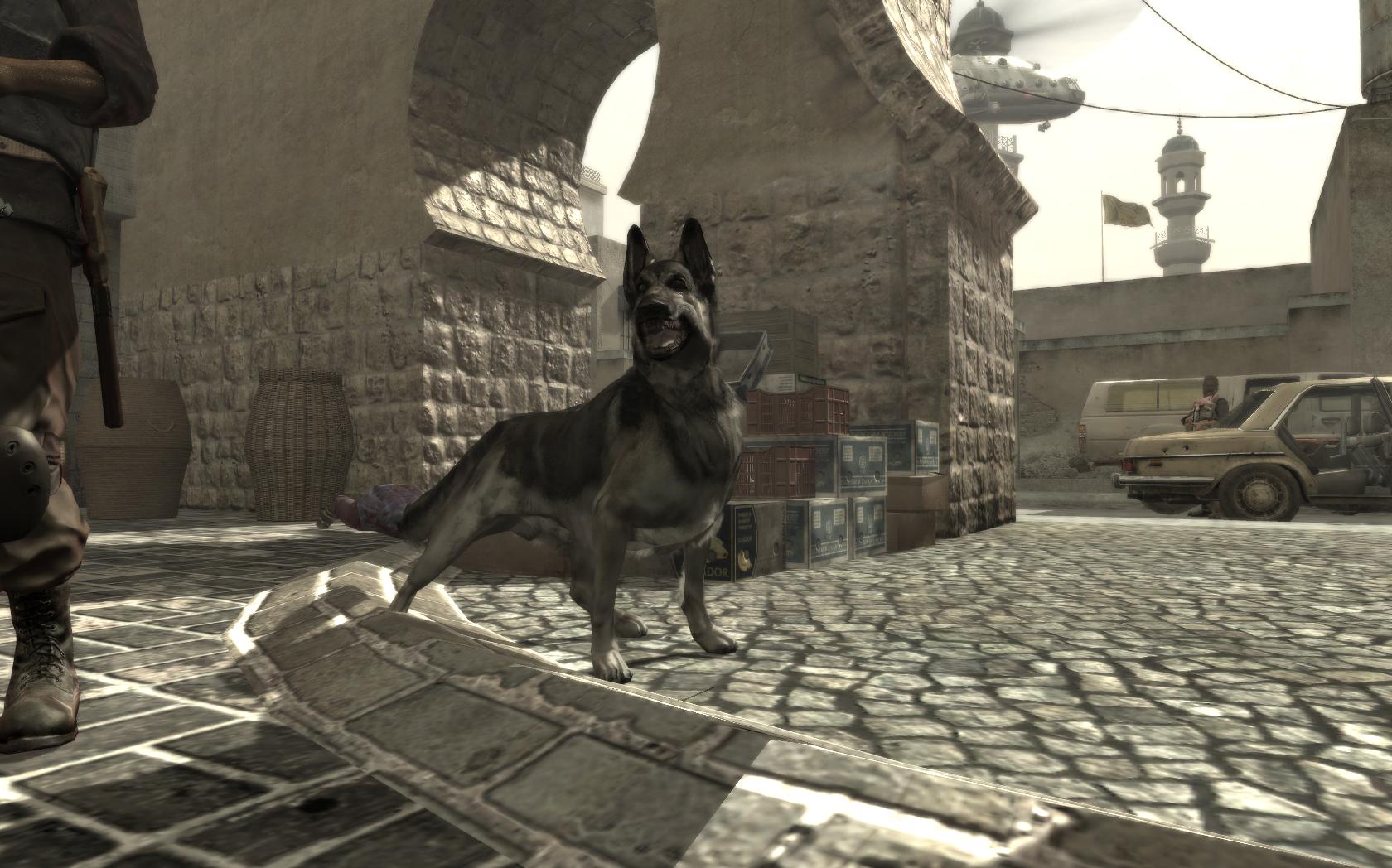 Dog Animal Call Of Duty Wiki Fandom Powered By Wikia