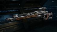 Drakon Gunsmith model Stock BO3