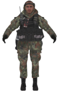 Ultranationalist woodland camo model MW2
