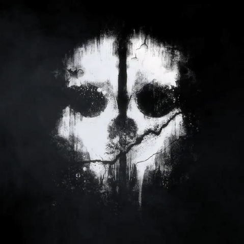 File:Logan Walker skull mask pattern CoDG.png