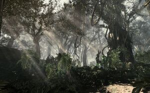 COD Ghosts Jungle Environment 1