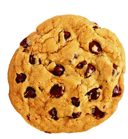 File:CookieSquee!.jpg