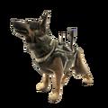 Riley Xbox Live avatar CODG.png