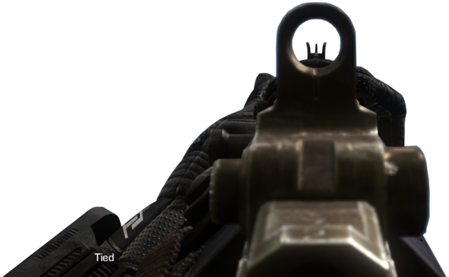File:SC-2010 iron sights CoDG.png