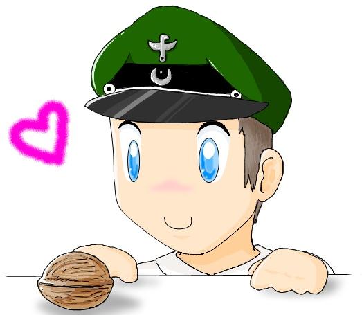 File:Walnuts.jpg