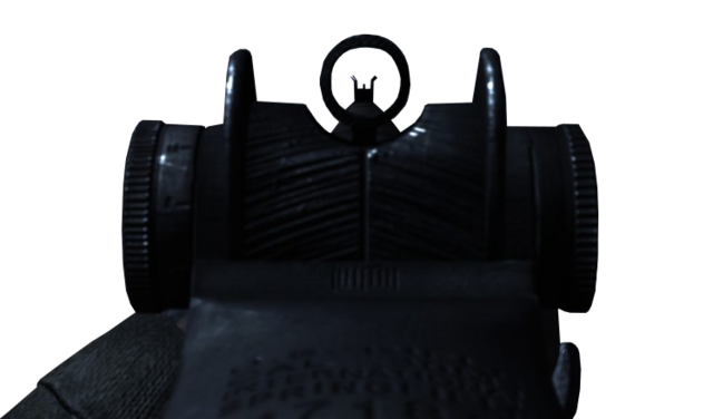 File:M1 Garand Iron Sights WaW.png