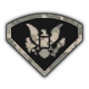 File:MW3 Rank spc1.png