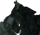 FAL/Camouflage