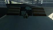Teddy Bear Getaway MW3