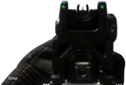 Honey Badger Iron Sights CODG