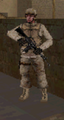 Sgt sears CoD4 DS.PNG