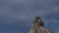 R3K Trojan IW.png