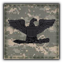 File:MW3 Rank Colonel.png