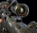 DSR 50/Camouflage