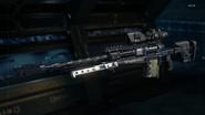 Locus Gunsmith model Extended Mags BO3