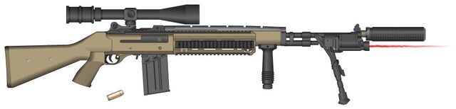 File:Personal Cpt. Riley PMG M14 EBR.jpg